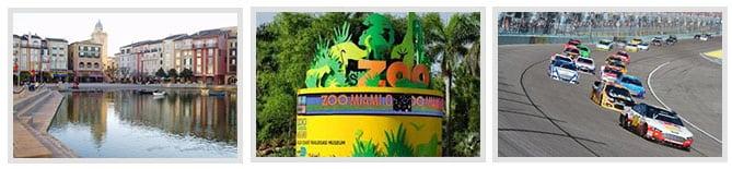 Miami Florida Search Engine Marketing and Custom Web Design by Nuzzledot
